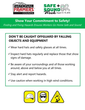 Safety Poster Thumbnail